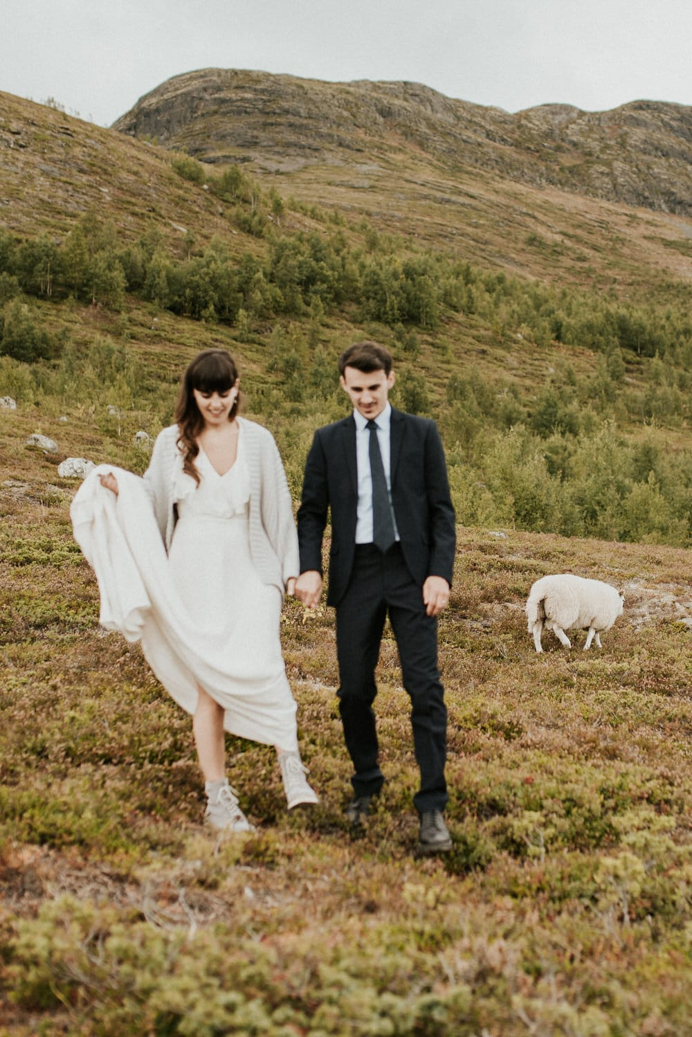 A bride and groom hiking with sheep at outdoor wedding